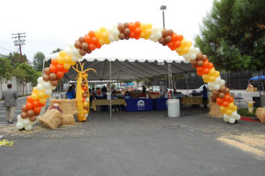 Outdoor balloon arch for harvest festival PIH corporate event